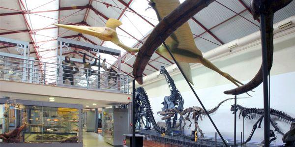 museo de ciencias naturales planes con ninos en madrid