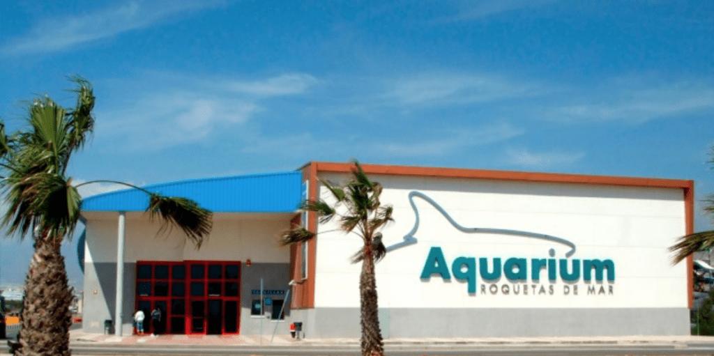planes con niños en roquetas de mar aquarium