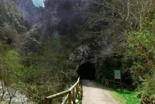 planes en Asturias con niños senda del oso